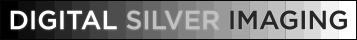 DSI-Logo-RGB