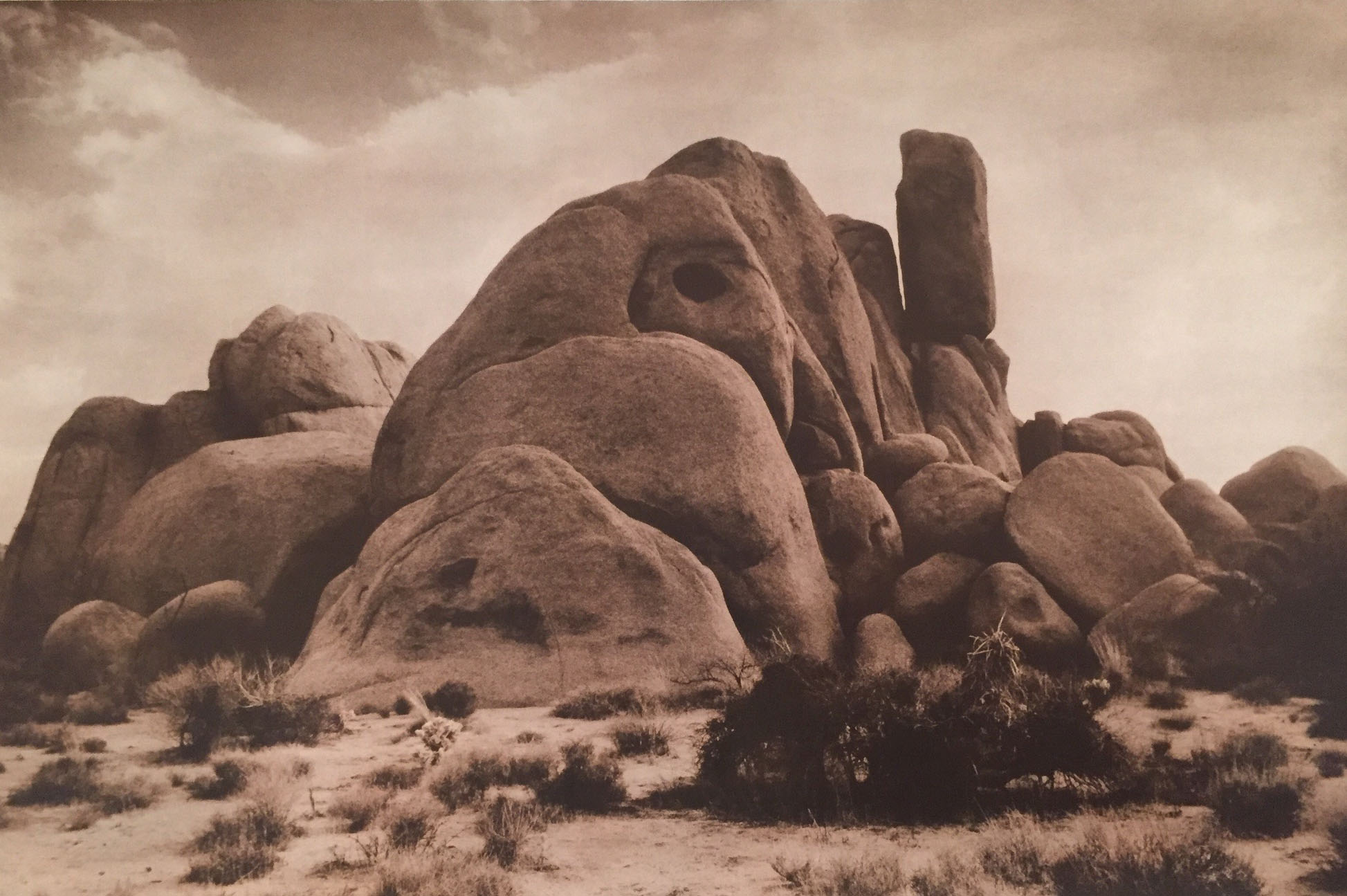 1990-Southwest-Raven-Rock-Joshua-Tree-SM9047